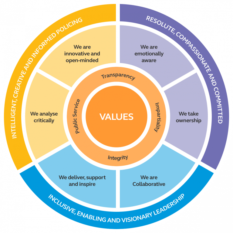 Competency and Values Framework Diagram